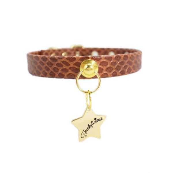 Collar Snake Chocolate